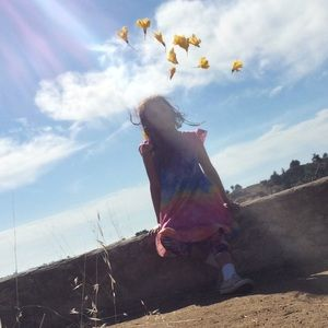 sunshine swing